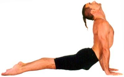 exercícios para perder barriga-cachorro-olhando-para-cima