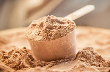 Whey Protein: Tipos, Como Tomar, Benefícios, Qual o melhor, Engorda?