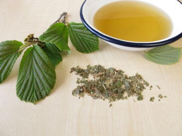 Faça um chá de Hamamélis e Manjerona, depois