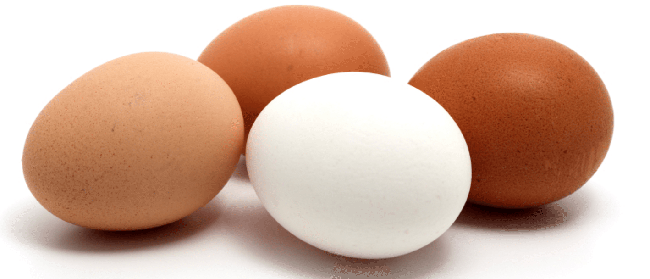 Ovos ajudam nosso organismo