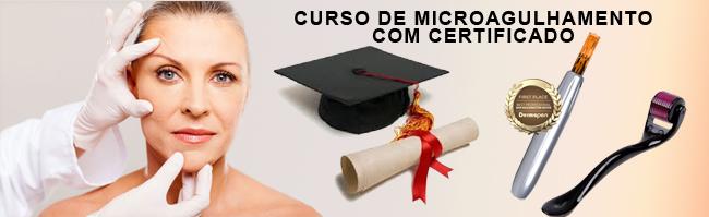 Curso de Microagulhamento online com Certificado
