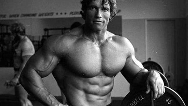 Levantar cada vez mais carga no decorrer do tempo é um fator importante para o ganho de massa muscular.